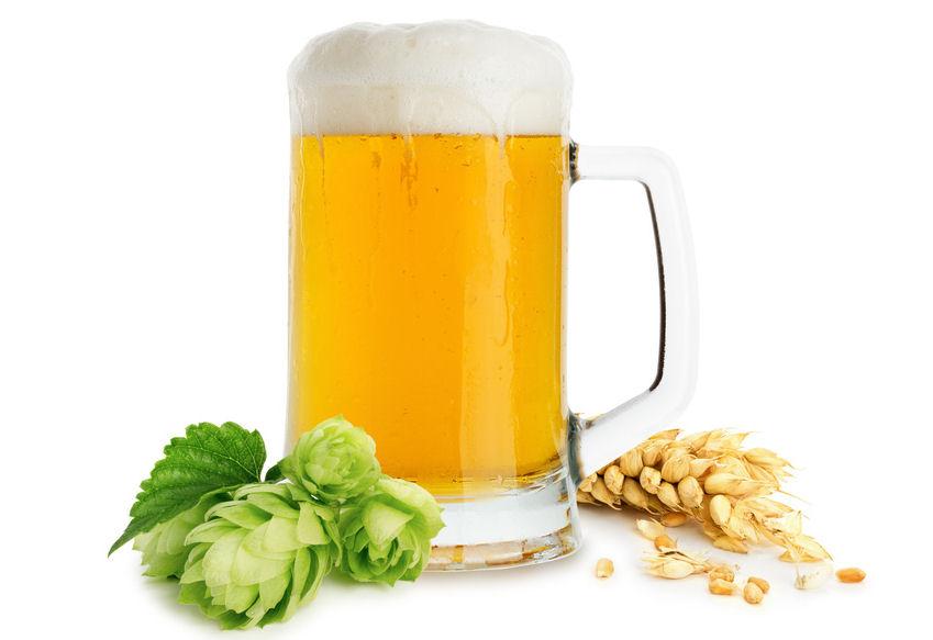 Pvpp Bier