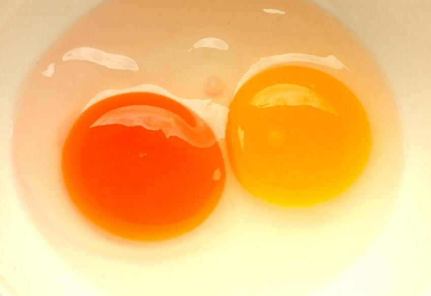Hühnerei Farbe