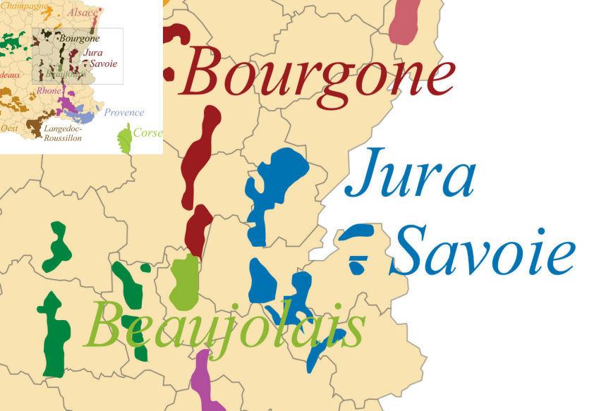 rote rebsorte aus dem beaujolais